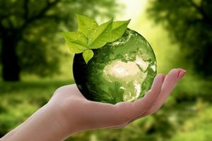 Advanced Course on Nonprofit Sustainability - By MAarilyn Donnellon